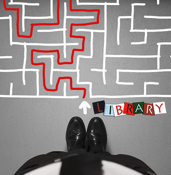 Don't Get Mad, Get Savvy: Sustainable Thinking for the Future of Libraries