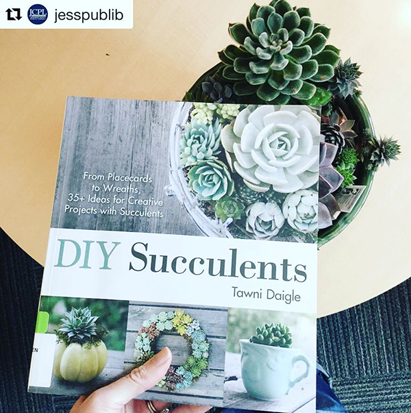 Succulents for #bookfacefriday
